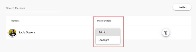 member role selection - admin or standard team member